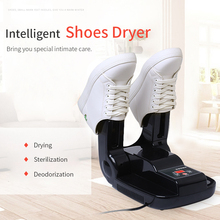Electric Shoe and Boot Dryer