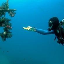 Gift Box 2000LM CREE XML T6 LED Diving Flashlight Waterproof Led Lamp Dive Light for Fishing