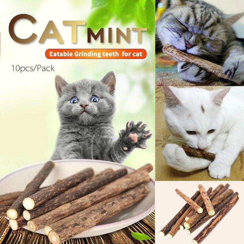 10pcs pure natural catnip pet cat molar toothpaste stick cat cleaning teeth teeth cat snacks sticks