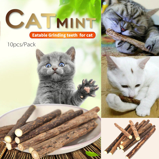10 pz Naturale Puro Catnip Pet Gatto Bastone Gatto Dentifricio Molare Pulizia De