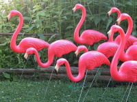 31 Height 10 Pairs/Lot Plastic Bright Pink Flamingo Garden,Yard And Lawn Art Ornament Wedding Ceremony Decoration