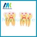 Manka Importa-50 unids Creativo tipo de Dientes Dental Clinic Regalo del borrador de lápiz, regalo especial para el dentista laboratorio Médico papelería