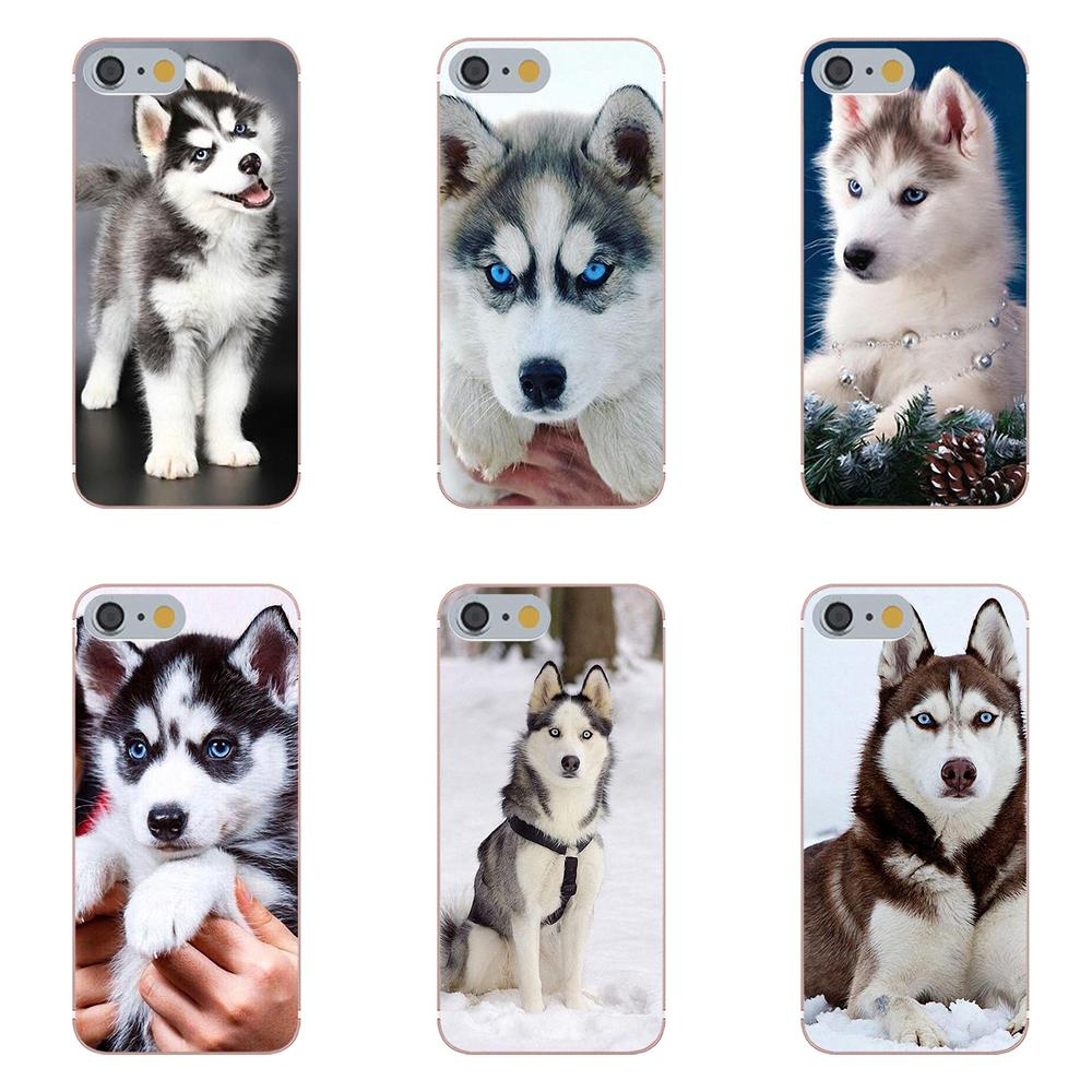 Oedmeb Puppy Phone Husky Soft-Silicone Transparent-Design Animal For Apple 4/4s/5/..