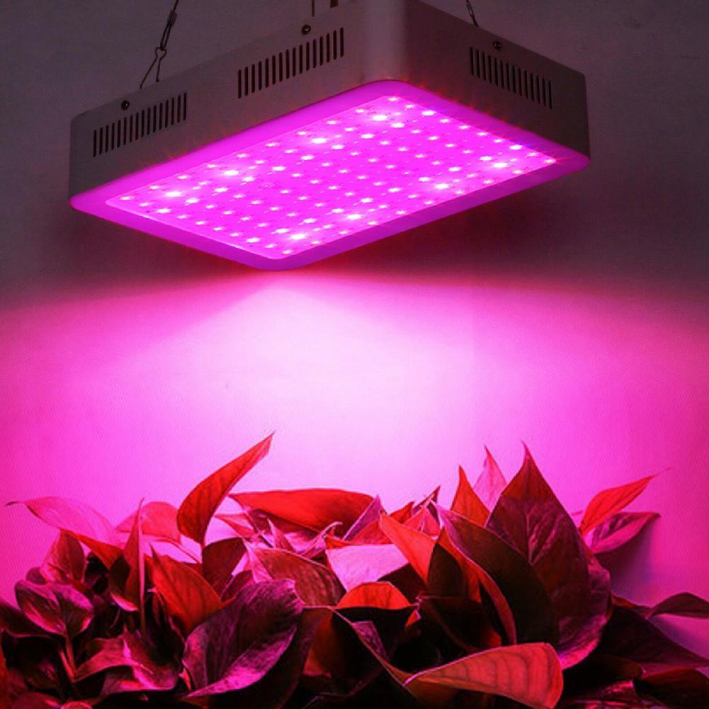 100 LED 10 W 85-265 v lampes de croissance LED grandir lumière plein spectre plante éclairage Fitolampy pour plantes fleurs culture de semis