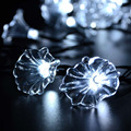 LED Morning Glory String Lights, 4.8m 20 LED String Lights for Outdoor, Garden, Home, Wedding, Christmas Party and Holiday Decor