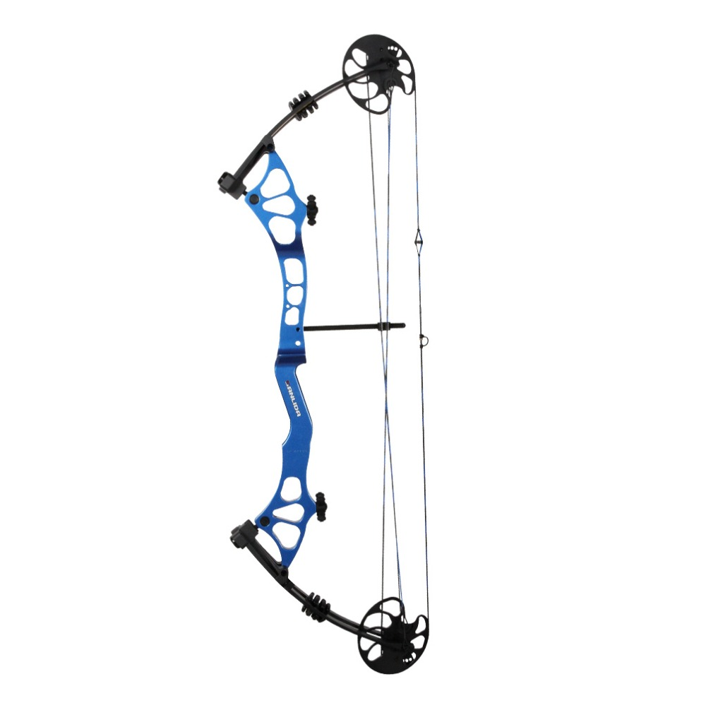 Sanlida Archery Intermediate Target Compound Bow 45 60LBS 18 32 305FPS Super Performance Hunting Shooting Outdoor