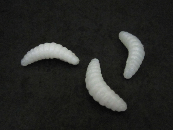 grub lure white 2