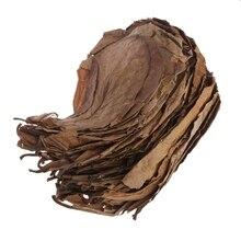 50 шт. натуральный катаппа листья миндаля листьев очистки рыб аквариум