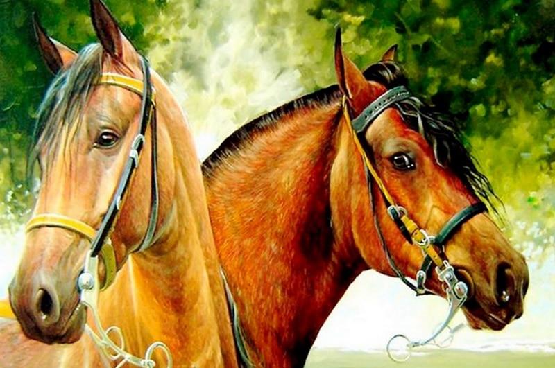 5D Maxima DIY Rhinestones diamond painting Two horses cross stitch full round diamond embroidery plastic crafts Animal painting