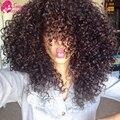 Малайзийский Вьющихся Волос 3 шт. Необработанные Virgin Малайзии Волос Поставщиков Вьющиеся Крючком Волосы Человеческих Волос Короткие Вьющиеся Переплетения Расширения