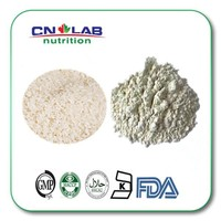 New Arrival Wholesale Bulk Organic Rice Protein Isolate Supplier 1kg