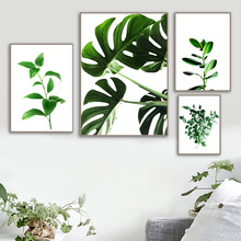 Green Monstera Plant Leaves Landscape Wall Art Canvas Painting Nordic Posters And Prints Wall Pictures For Living Room Decor wall art canvas painting fresh green monstera small plant leaves nordic posters and prints wall pictures for living room decor