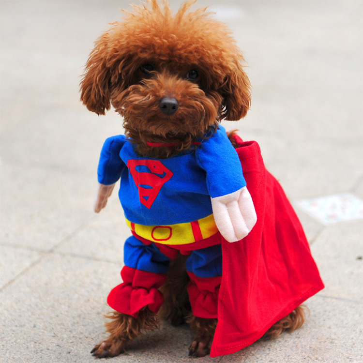 AMAZING SUPERHERO FANCY DRESS DOG COSTUME OUTFIT GIFT TOY-in Jumpsuits u0026 Rompers from Home u0026 Garden on Aliexpress.com | Alibaba Group & AMAZING SUPERHERO FANCY DRESS DOG COSTUME OUTFIT GIFT TOY-in ...