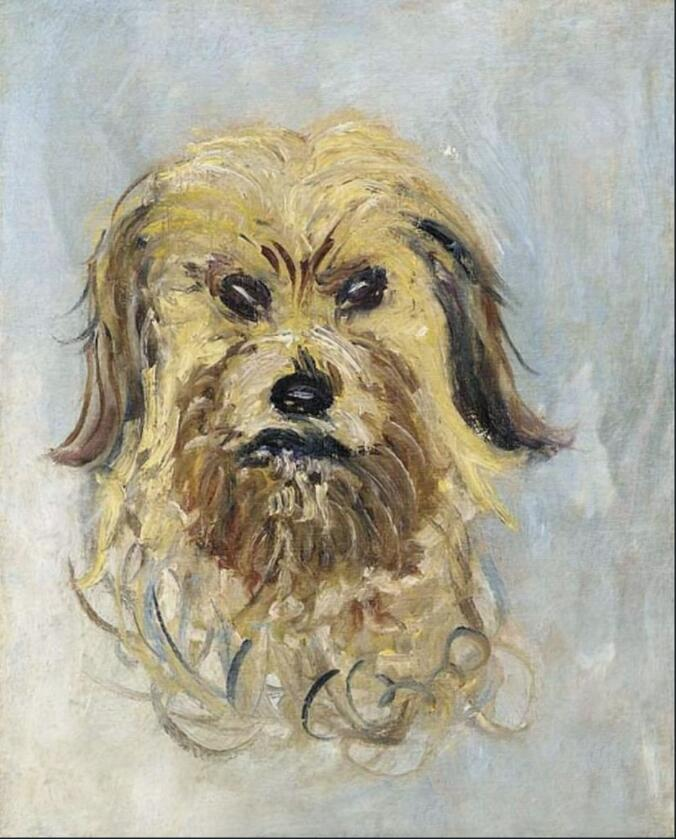 High quality Oil painting Canvas Reproductions Head of the Dog (1882) By Claude Monet hand paintedHigh quality Oil painting Canvas Reproductions Head of the Dog (1882) By Claude Monet hand painted