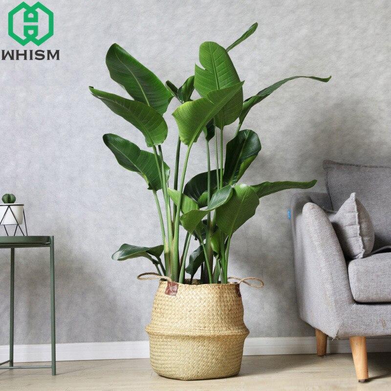 S / M / L / XL / XXL עבודת יד ראטן בטן הצמח - מוצרים גן