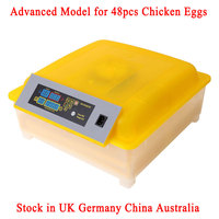 Automatic Incubator Egg Tray 48 Eggs Incubator 110V 220V Motors Advanced Incubadora Chicken Bird Equipment