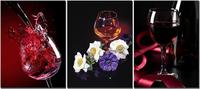 3 Pieces Canvas Prints Red Wine With Flower Giclee Artwork Contemporary Painting Wall Decor Rome Decorations