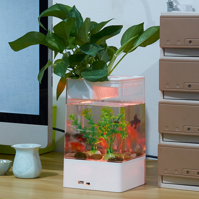 Desktop Aquarium Black/ White USB Mini Aquarium Fish Tank Aquarium with LED Lamp Light Fish Tank Aquarium