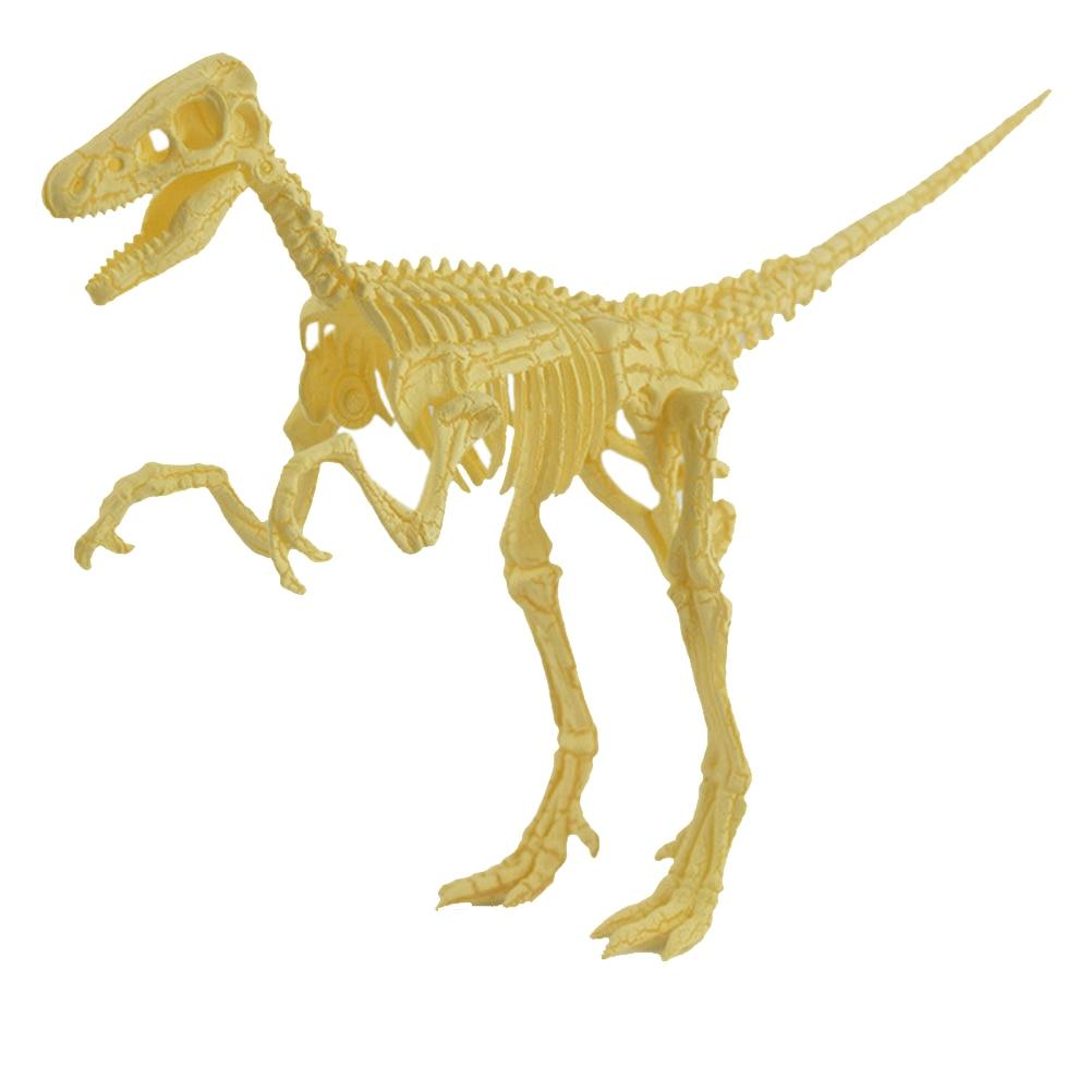 Kids Bottle Dinosaurs Model Assorted Plastic Dinosaurs Fossil Skeleton Dino Figures Birthday Gift for Children