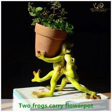 Collezione tutti i giorni decorazioni per la casa Mini vaso da fiori fata giardino rana animale vaso succulento decorazione esterna vaso da fiori in argilla