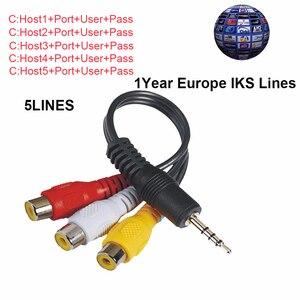 C-lines Server For 1 Year 7 Lines Europe Spain ES DE IT For DVB-S2 Receptor Satelite Receiver For Freesat V8 V9 Super V7 HD(China)