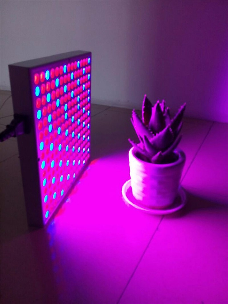 Red Blue LED Grow Light03