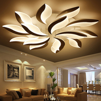 Acrylic LED Ceiling Lights Modern Simplicity Home Decorative Light Fixtures Ceiling Lamp Luminaire For Living Room