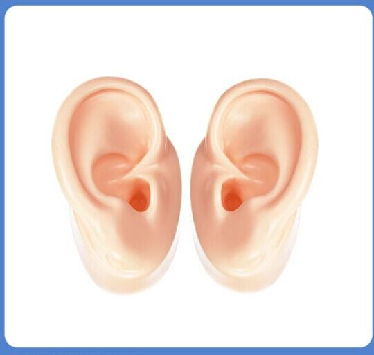Silicone ear model soft ear model human ear model simulation human ear hearing aid display props teaching tools