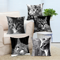 Animals Cool Modern Black Maine Coon Cat Customized  Soft Pillow Case Creative DIY to Digital Printing 2 Side Throw Pillow Cover