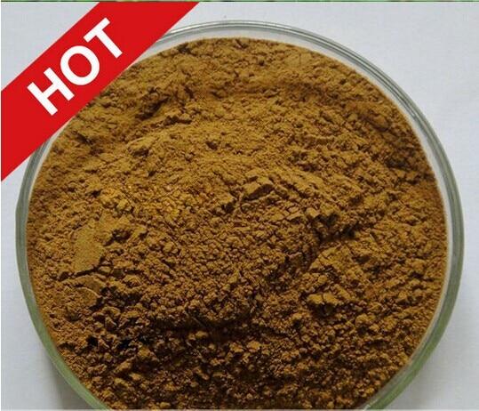 200g Heißer verkauf 100% Natürliche Tribulus Terrestris Extrakt Pulver 99% Muskelmasse Booster...