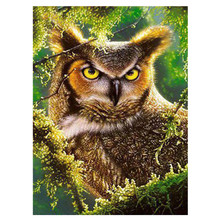 5D DIY full diamond painting animal owl embroidery rhinestone cross stitch home decoration