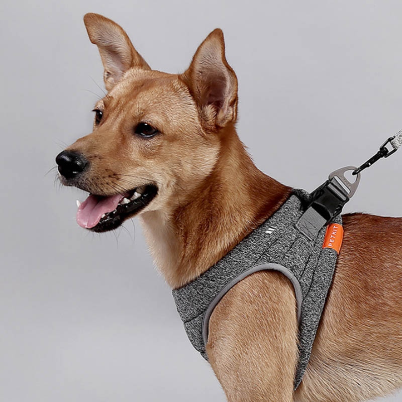 Pet Dog Cat Harness Vest Adjustable Reflective No Pull Dog Harness Vest Walking Lead Leash for Puppy Harness for Dog in Harnesses from Home Garden