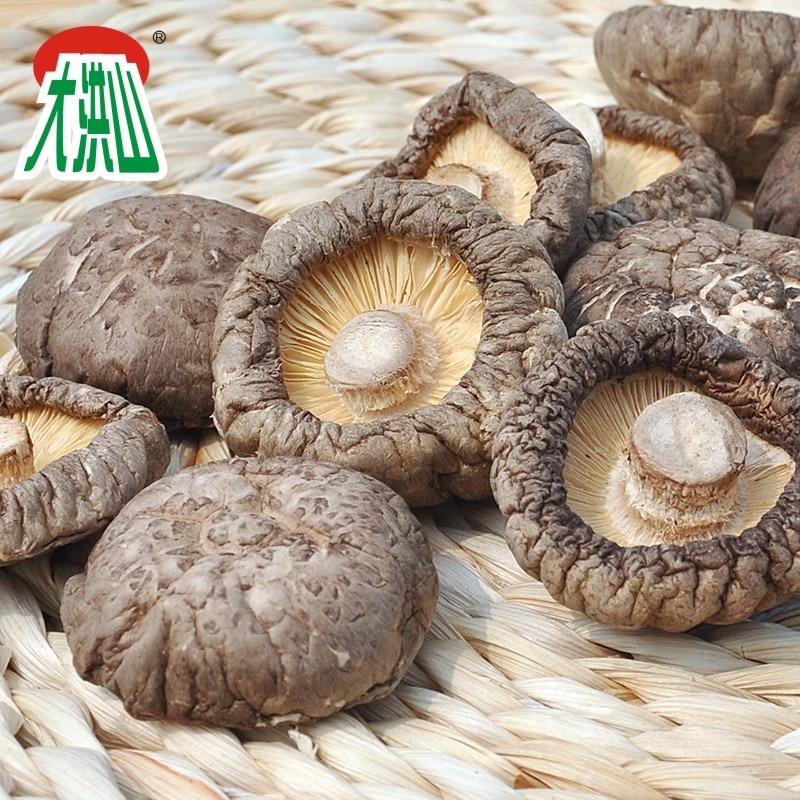 GREENFIELD 500g chinese dried mushrooms Dried Shiitake Mushroom dried PO KU Mushroom organic shiitake mushrooms