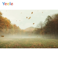 Yeele Autumn Landscape bedhead Fallen Leaves Mount Photography Backdrops Personalized Photographic Backgrounds For Photo Studio
