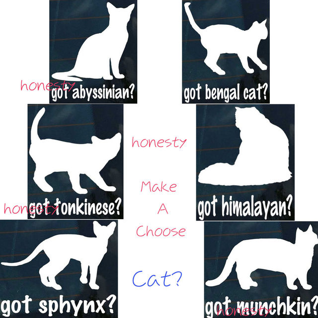 Cat Graphic Decor Gift Decal Car Truck Window Per Stairs Wall Pc Sticker Gl Bed Toilet 7 Types