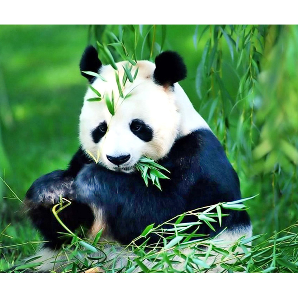 hight resolution of detail feedback questions about diamond painting full drill square round panda bamboo mosaic diy diamond painting cross stitch embroidery home decor on