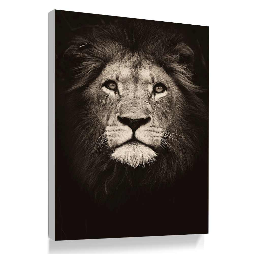 GOODECOR Wall Art Poster Print  Canvas Painting Black and White Picture for Living Room Canvas  Wall Art Home Decoration