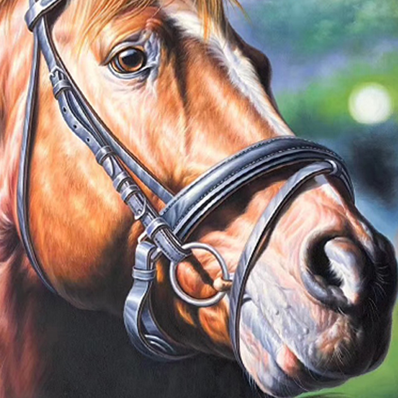 100 Hand painted Modern head of horse Art Painting On Canvas Wall Art Wall Adornment pictures Painting For Live Room Home Decor in Painting Calligraphy from Home Garden