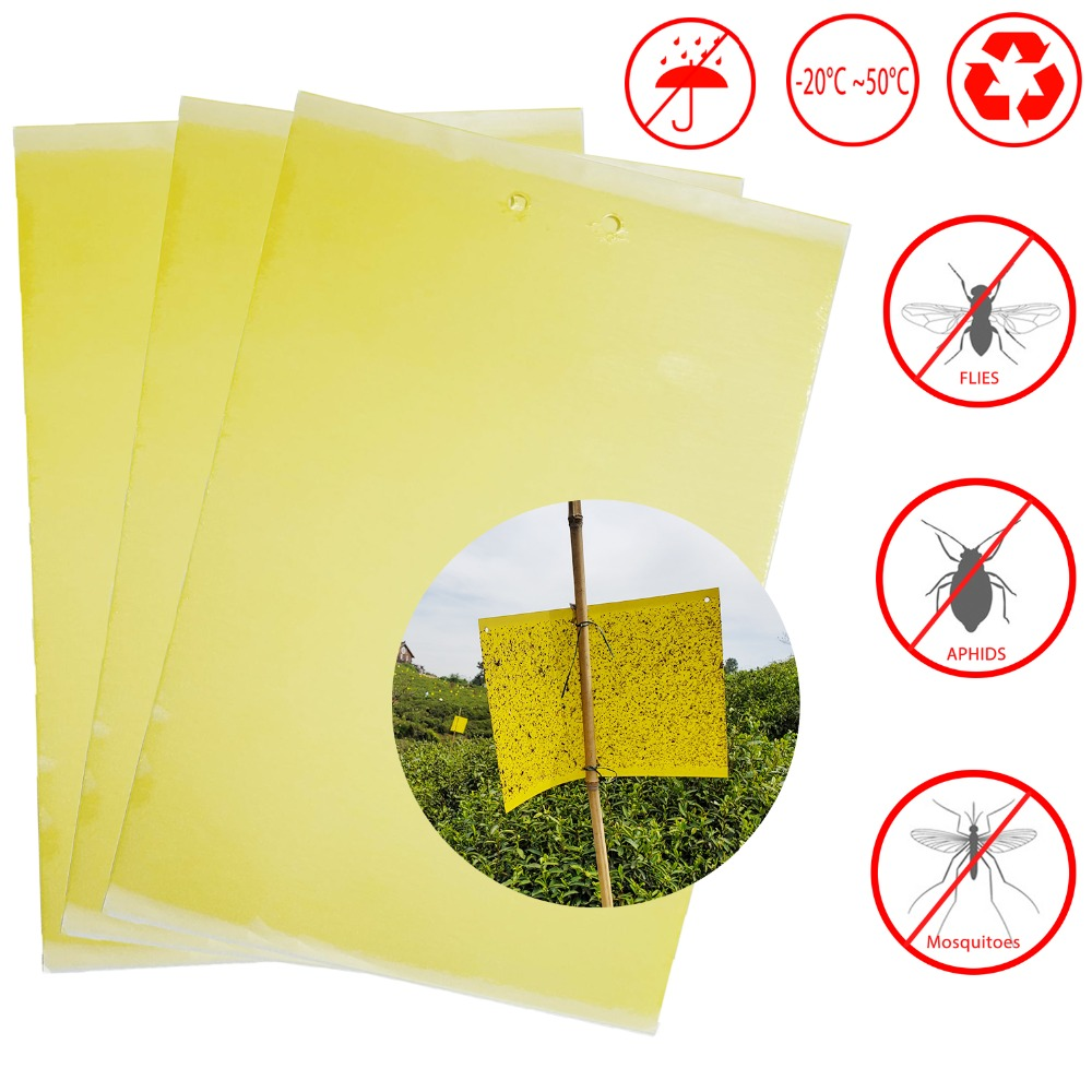 Pest Reject Glue Trap Fly Killer Catcher Anti Moustique Aphids Whiteflies Mosquitoes Fruit Fly Trap For Outdoor Plant Restaurant