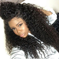 "8A Lace Front Human Hair Wigs 250% Density Glueless Malaysian Curly Lace Wig 12-24"" Full Lace Human Hair Wigs For Black Women"