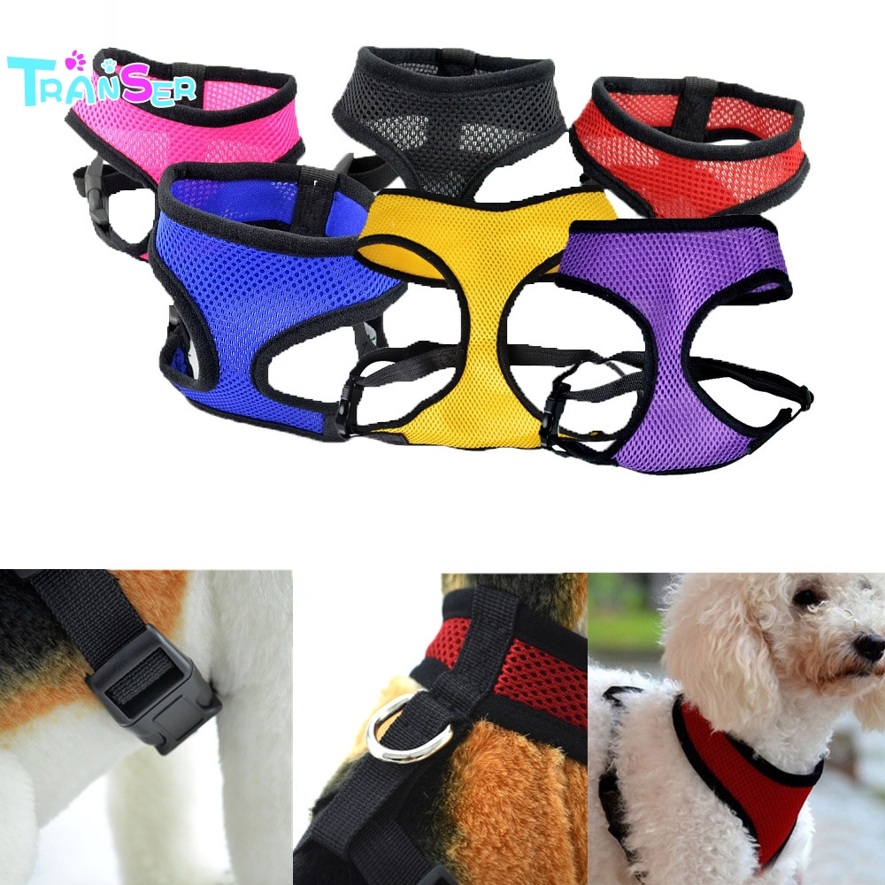 Pas pas pas moda pas pas telovnik vse sezone Comfort mehko dihanje - Izdelki za hišne ljubljenčke