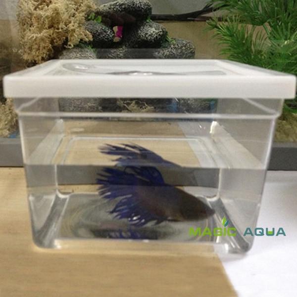 US $84 59 6% OFF 50pcs/lot Mini Betta Fish Fighting Fish Tank Aquarium  Whole Sale Price-in Aquariums & Tanks from Home & Garden on Aliexpress com   