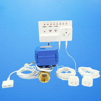 Smart Home Water Water Leakage Detection Alarms System With One Motorized Valve DN15 DN20 DN25 Leakage