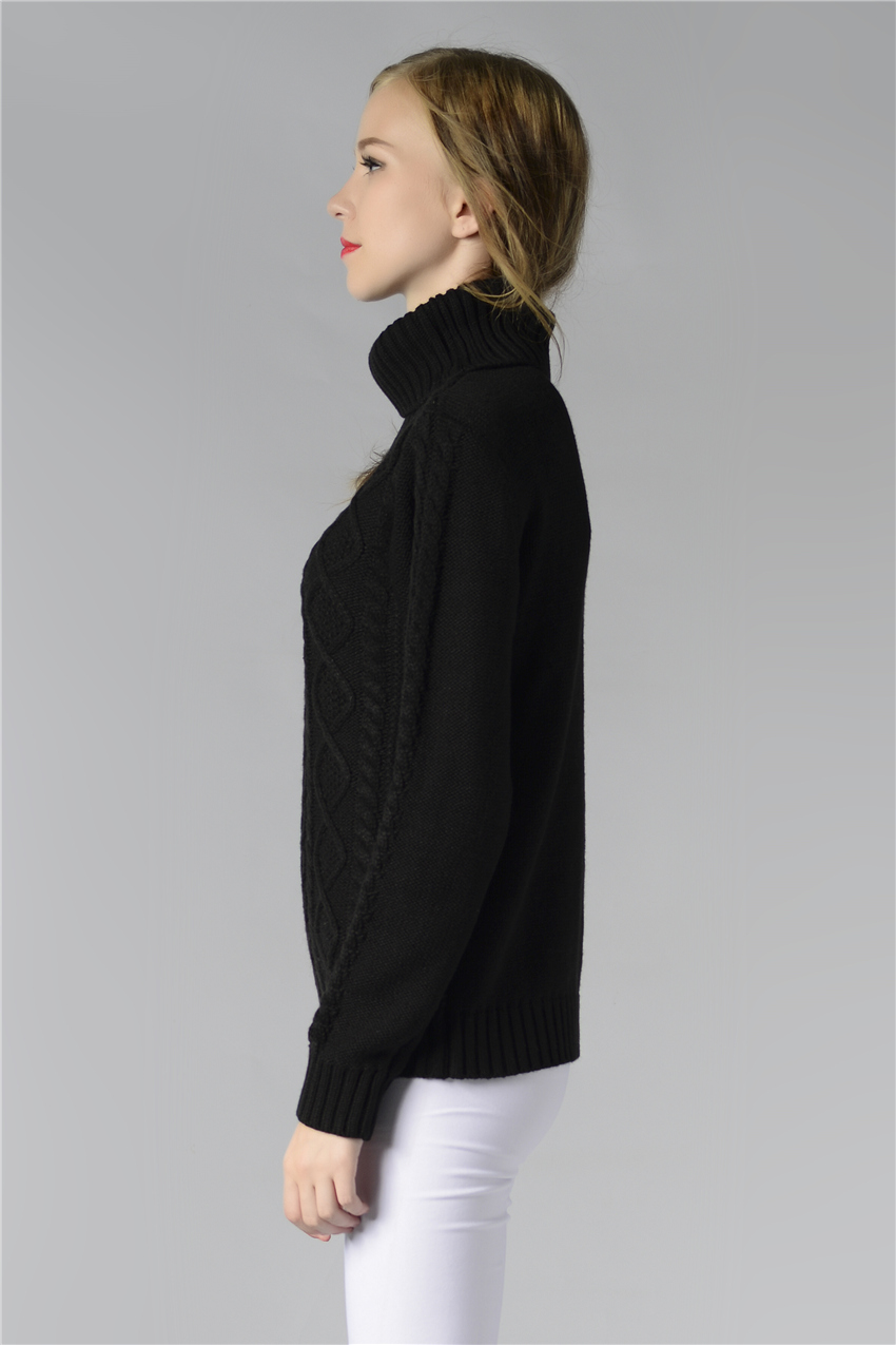 HTB1jDoKSpXXXXXmXXXXq6xXFXXXf - FREE SHIPPING ! Sweater Long Sleeve Turtleneck JKP196