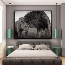 Lions Head to Head Black and White Canvas Art Painting Posters and Prints Scandinavian Cuadros Wall Art Picture for Living Room(China)