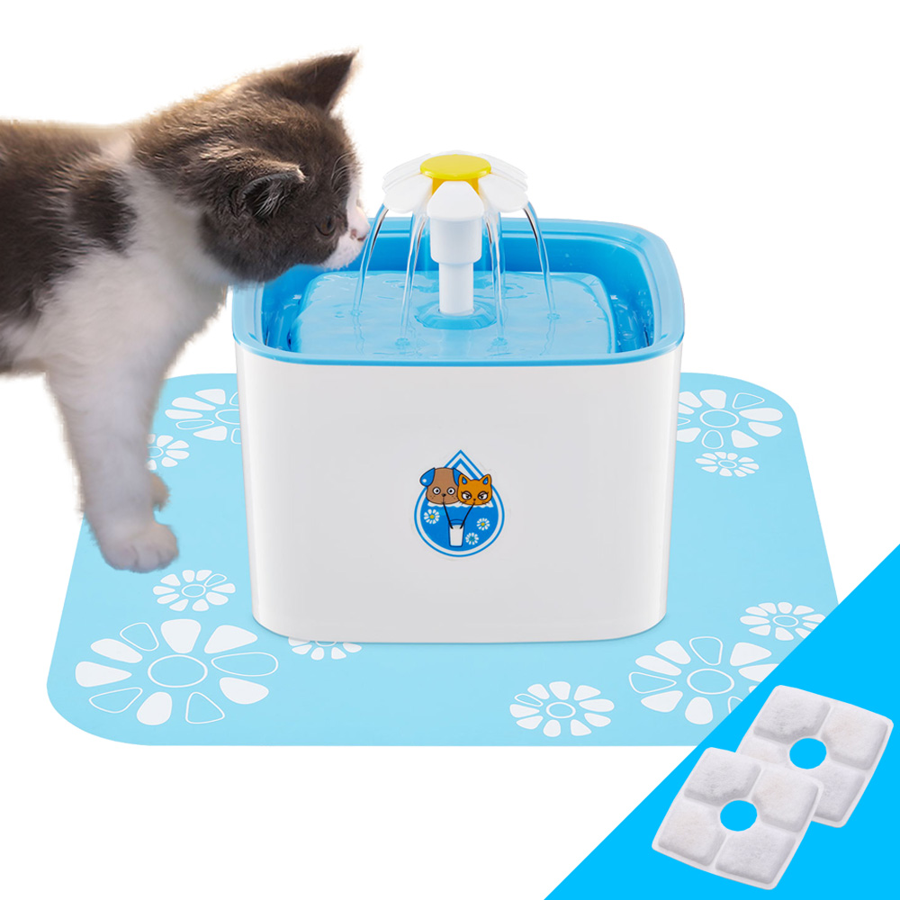 cat water fountain flower