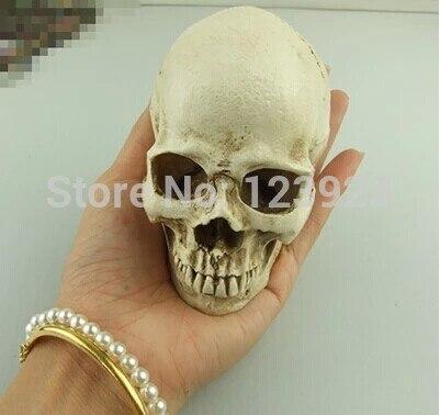 Human Skull 9x7x8cm High Grade Resin Specializing In The Production Of The Skull Skull Must 1