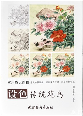 Chinese Traditional Flowers And Birds White Painting Adult Coloring Book Big Size Drawing Papers Textbook (48x41cm/19.2x16.1In)