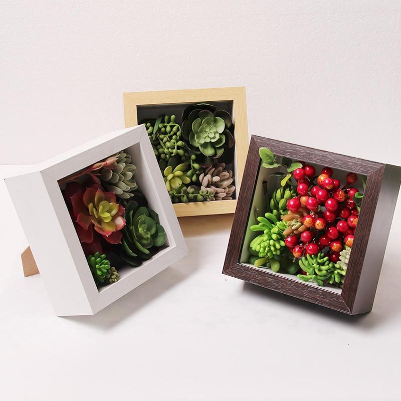 Classical 6cm Depth Specimen Box Plant Hexapod Insect Frame Box ...