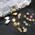 MIX19  100PCS Mix Shapes Natural Shell Nail Accessories 3D Nail Art Decoration Fashion DIY Nail